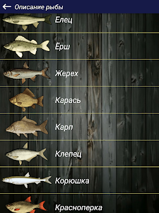 screenshot of Прогноз клева version 1.13.1