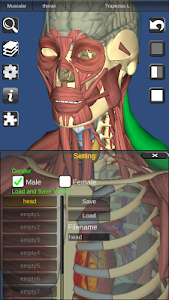Download 3D Bones and Organs (Anatomy) 3.1.0 APK