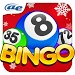 Download AE Bingo: Offline Bingo Games  APK
