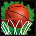 Download BasketBall Jungle 1 APK