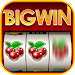Download Big Win Slots™ - Slot Machines 1.19.2 APK