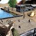 Download Border Army Sniper 1.2 APK