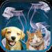 Download Cat + Dog Sound effects 10 APK