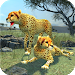 Download Clan of Cheetahs 1.1 APK