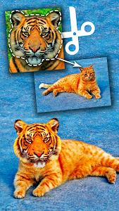 screenshot of Cut Paste Photo Seamless Edit version 23.6