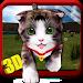 Download Cute Cat Simulator – 3D Game 1.1 APK