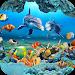 Download Fish Live Wallpaper 3D Aquarium Background HD 2018 1.3 APK
