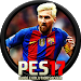 GUIDE PES 17