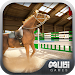 Download Horse Simulator 3D 1.0.1 APK
