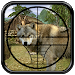 Download Hunting Jungle Wolf 1.3 APK