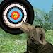 Download Real Shooting Challenge 1.2 APK