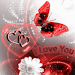 Download Red Butterfly White Flower Lov 4.0 APK