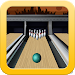 Download Simple Bowling 3.1 APK