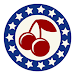 Download SlotAmerica 1.25.9 APK
