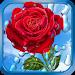 Download Summer Rain, Flowers, HD LWP 2.1.2 APK