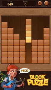 screenshot of Wood Block Puzzle version 3.0