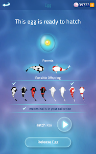 Download Zen Koi 2 2.1.4 APK
