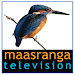 Download maasranga television 2.01 APK